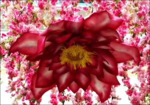 Giant Flor